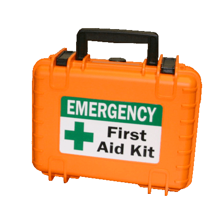 Medshield 10 First Aid Kit